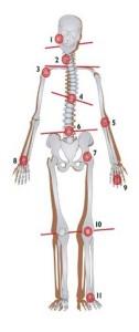 Prvo vratno vretence in ravnanje atlasa